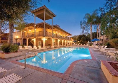 Dolphin's Cove Pool at Night