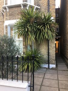 Photo for Stunning Wandsworth Common flat with huge garden, minutes from central London