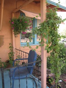 Photo for 3 Blocks To Campus, Short Walk To 4th Ave, Downtown Tucson