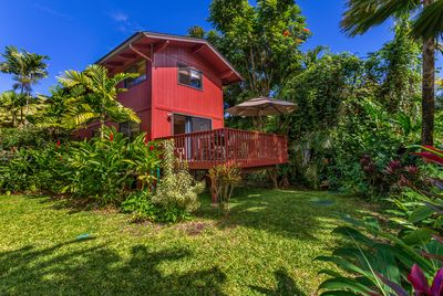 Back of house with lanai, outdoor shower, lush yard.