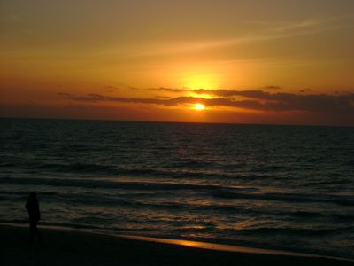 Another gorgeous gulf sunset