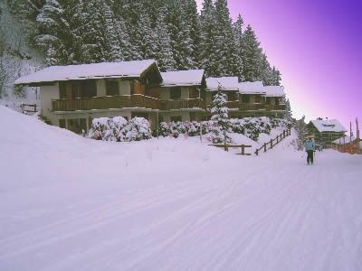 Photo for Nice chalet on the ski piste on Les Collons