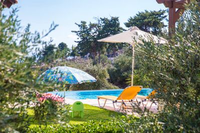 The Pool is hidden around all kind of trees and plants to give privacy