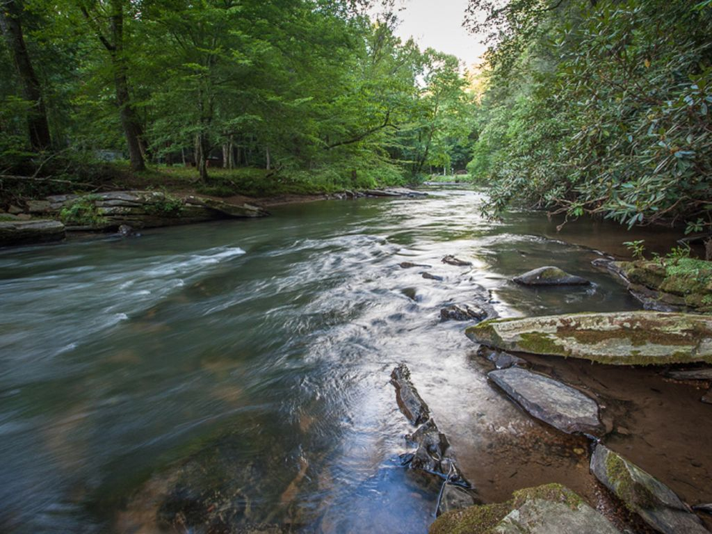 River Walk Trophy Trout Stream Ellijay North Georgia