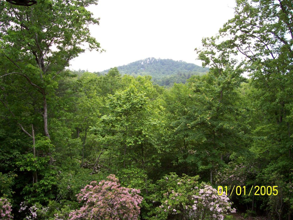 February Special Rate Mountain Secluded Blue Ridge Hot
