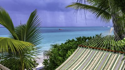 Relax in our beachfront hammock