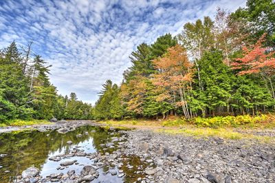 Situated on a tree farm, the cottage offers 1,700 feet along the Union River.