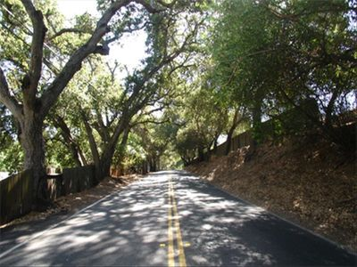 Vacation Rental - Saratoga, California - Tranquil and Quiet !