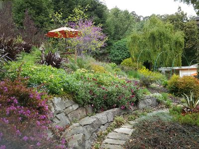 Large stone bench with flowering perennials flowing over it's sides.