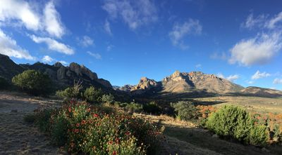 Looking out from the front porch toward Cave Creek Canyon.