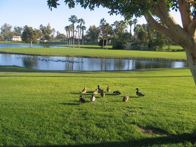 Photo for Oasis Townhome  - 18th Fairway, Lake & Country Club View   -   SNOW BIRDS