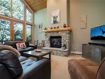 Evergreen Townhomes, Steamboat Springs, CO, USA