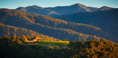 Photo for Vineyard Cottage with Stunning Views