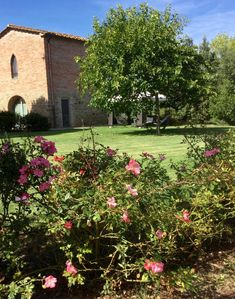 Photo for 2BR Farmhouse Vacation Rental in Monte San Savino, Arezzo
