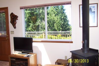 Flat screen TV and woodstove (presto logs only)