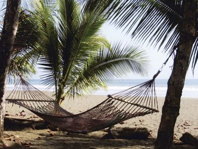 Relax in a hammock shaded by palm trees and feel the ocean breeze