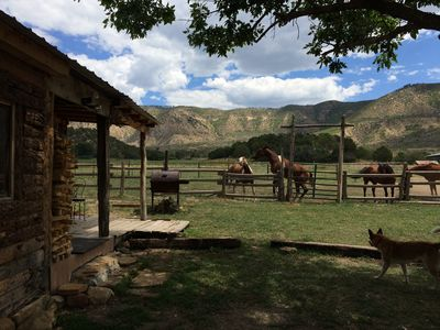 Photo for Mesa Verde Stables guest cabin on 480 acre working horse ranch