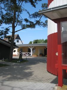 Photo for Apartment / app. for 5 guests with 75m² in Börgerende-Rethwisch (68418)