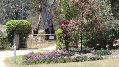 Photo for 1BR Cabin Vacation Rental in Bathurst Peel, NSW