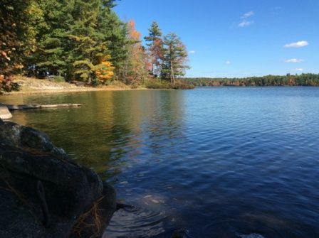 Spectacular water views outstanding bass fishing south for Fishing resorts near me