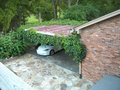Covered Parking Area, Gardens and Grapevines