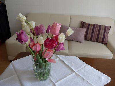 Photo for 1BR Apartment Vacation Rental in Mahlberg, BW