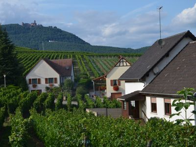 Photo for The Quietude, house surrounded by vineyards, at the foot of the castle of Haut-Koenisgbourg