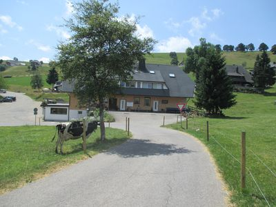 House Sportrees In Hofsgrund Oberried Near Freiburg Black Forest