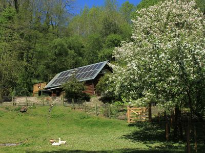 Photo for Family/pet-friendly woodland retreat in Mortimer Country near historic Ludlow