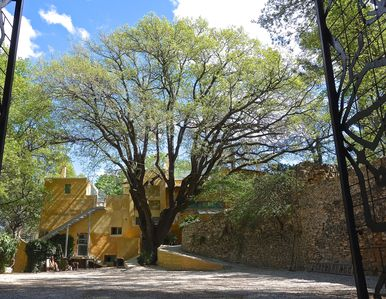 Photo for The special holiday home under the big oak tree in the middle of nature