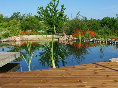 Photo for Blueberries and its natural pool