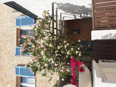 Photo for Provencal villa south facing quiet 10 minutes from the Bay of Angels