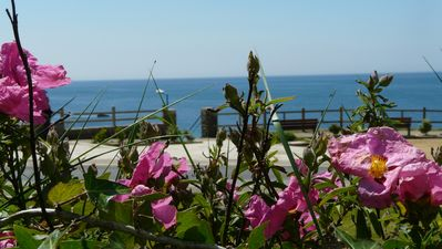 Photo for FACING THE SEA AND BEACH RENT 4 **** WITH PRIVATE GARDEN