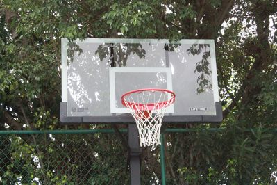 Shoot some hoops with your travel companions!