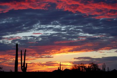 The painted skies at sunset are what desert vacations are all about!