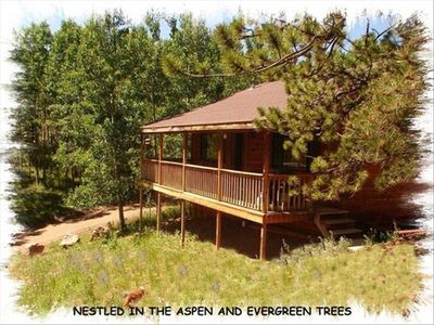 Front of Cabin view from the hillside above