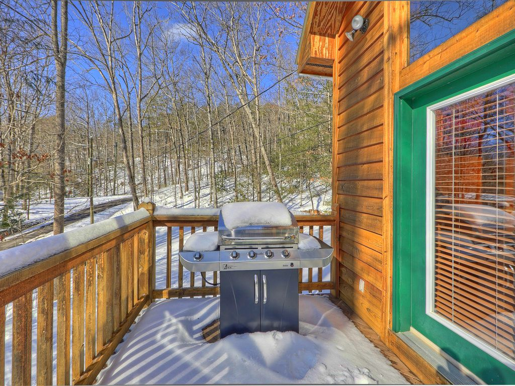 Secluded 1 bedroom cabin bordering the great smoky for 10 bedroom cabins in tennessee