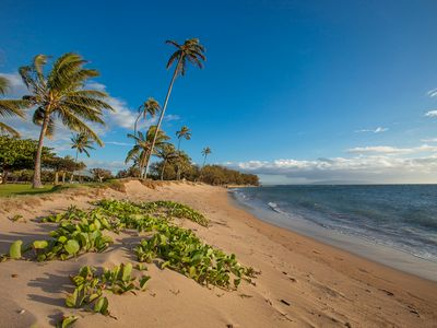Photo for NEW LISTING A301 Beachfront Kihei Beauty. Remodeled kitchen & baths, Updated.