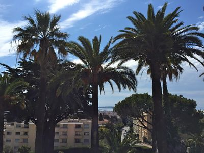 Photo for Sea view, 75-sq.m, south-facing flat, 2 terraces in a pretty palm grove.