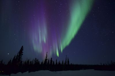 Gorgeous Northern Lights