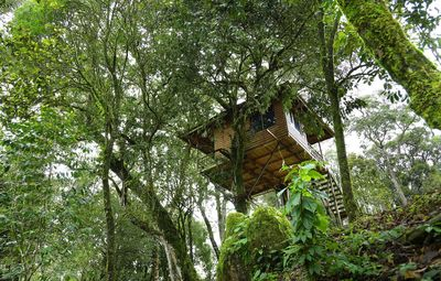 Photo for Awesome Beautiful view Stay/Resorts/Tree Houses