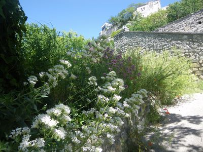 Photo for Dismounted with charming courtyard, the Baux de Provence