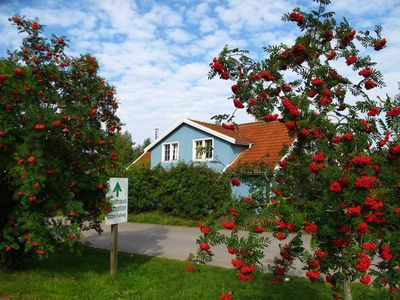 Photo for Holiday house Storch 3 - Holiday Park Müritzparadies (Müritzparadies GmbH)