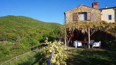Photo for The Wisteria, 10 minutes from the sea of Tuscany