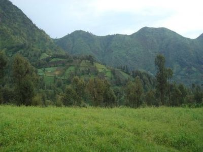 Photo for A double bedroom near Rehat Bromo Rst. & Warung Rinjani