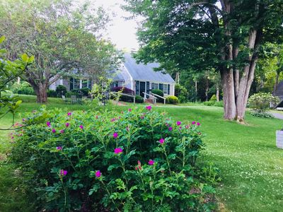Photo for 2BR Townhome Vacation Rental in Yarmouth, Massachusetts