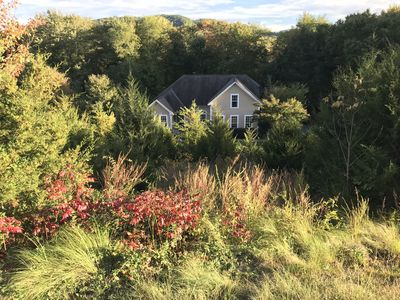 Photo for 4BR House Vacation Rental in Nellysford, Virginia