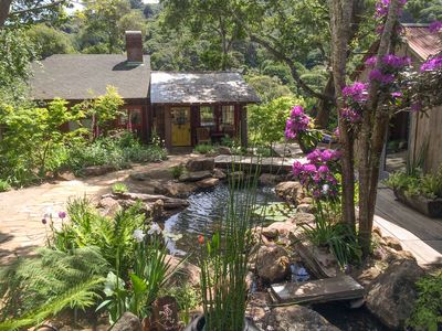 Front yard garden and pond.