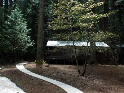 Photo for Come Home to the Little Pine Cabin at Yosemite Forest Lodge!