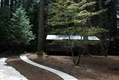 Stay in this cozy 1 bedroom cabin nestled in the woods